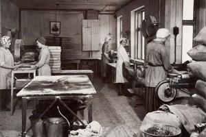Historisk virksomhedsportræt til Fertin Pharma A/S